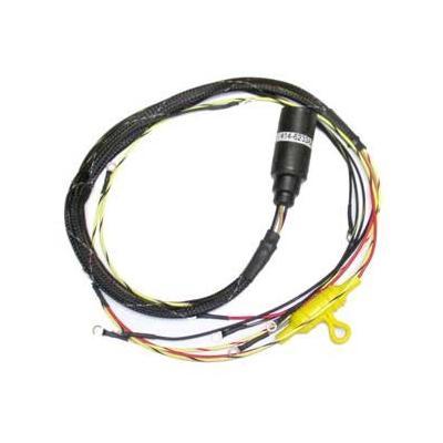 cdi marine engine wiring harnesses basic power