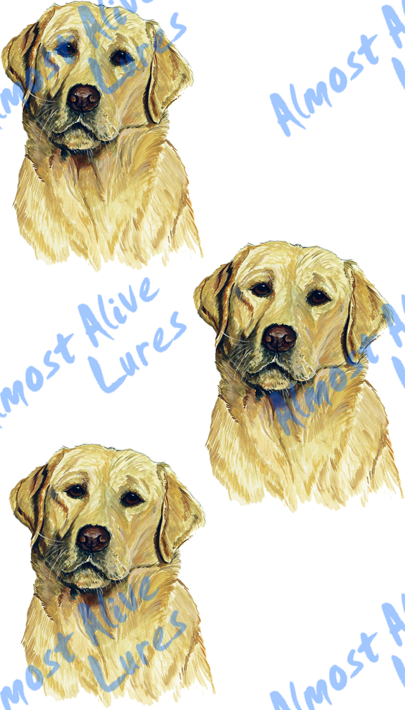 Vinyl Decal (Made in USA) Blonde Lab