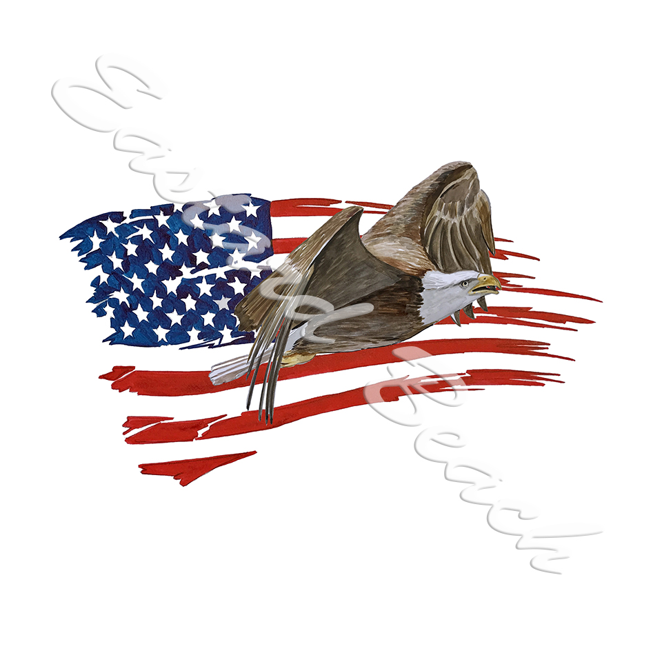 American Flag Tattered Eagle 1