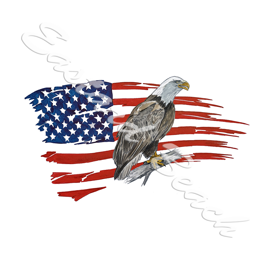 American Flag - Don't Tread On Me STK1069