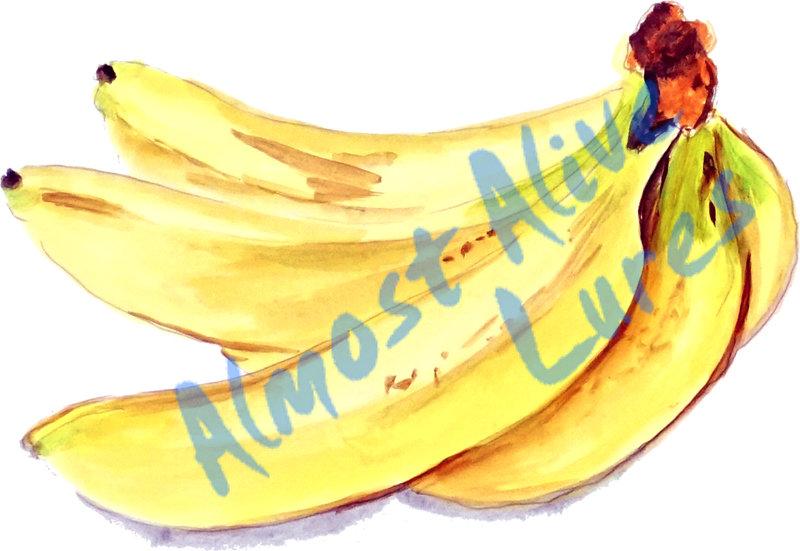 Vinyl Decal (Made in USA) Bananas STK382