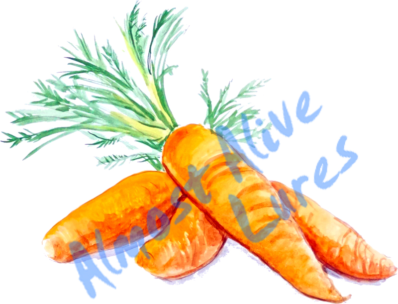 Vinyl Decal (Made in USA) Carrots