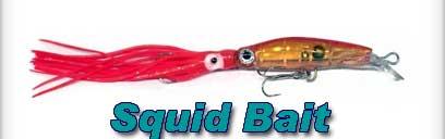Squid Bait