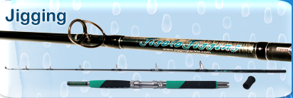 Jigging Fishing Rods