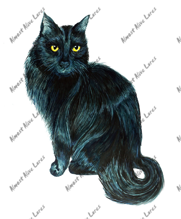 Cat Decal - Black Cat