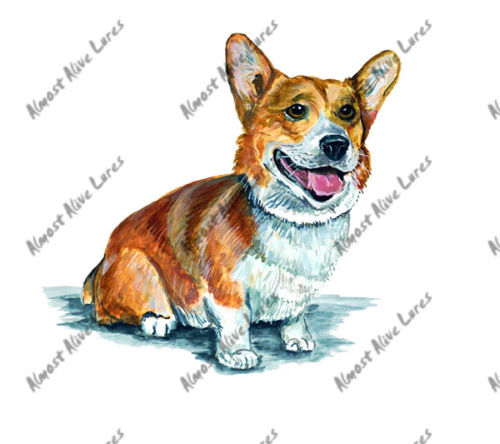 Corgie Large Decal--4.925x5.183