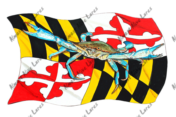 Fish Decal - Maryland And Blue Crab Large--8.469x4.973