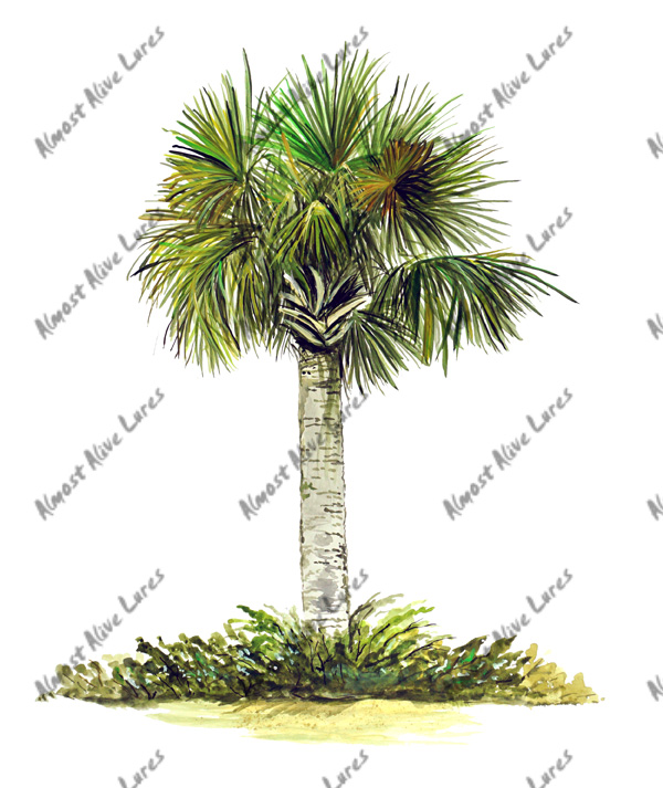 Beach Decals - Palm Tree