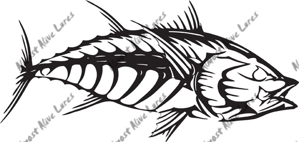 Fish-Bonz Series : Marine Engine Parts | Fishing Tackle | Basic ...