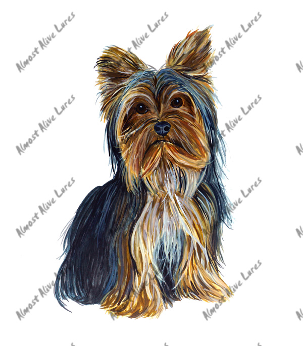 Dog Decal - Yorkie Large Decal--8.069x5.002
